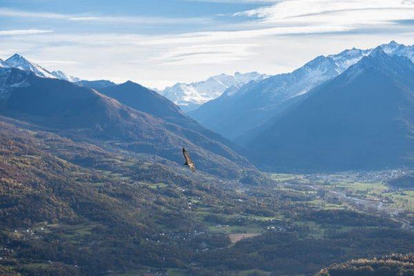 acumpanyat-montagne-pyrénnées-Cauterets-Gavarnie