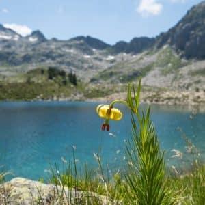 Néouvielle, la boucle des cinq lacs, Lundi 09h-17h